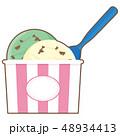 アイス アイスクリーム チョコミントのイラスト 48934413