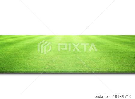 green grass texture 48939710