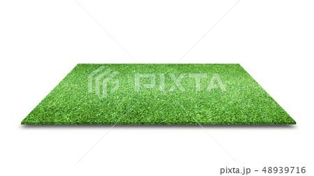 green grass texture 48939716