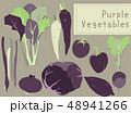 紫色の野菜 48941266