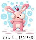 うさぎ ウサギ 兎のイラスト 48943461