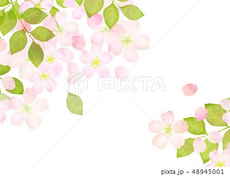 桜 水彩風 テクスチャー 48945001