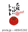 トマト ベクター 夏野菜のイラスト 48945282