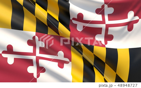 State of Maryland flag. Flags of the states of USA. 48948727