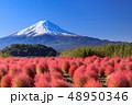 富士山 コキア 紅葉の写真 48950346