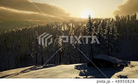 Fantastic Evening Winter Landscape 48950828