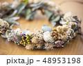 花冠  48953198