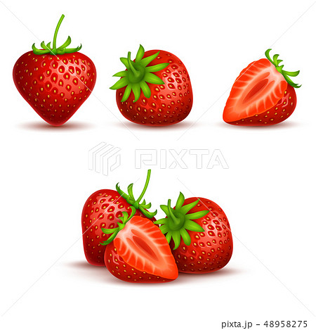 Vector realistic sweet and fresh strawberry isolated on white background 48958275