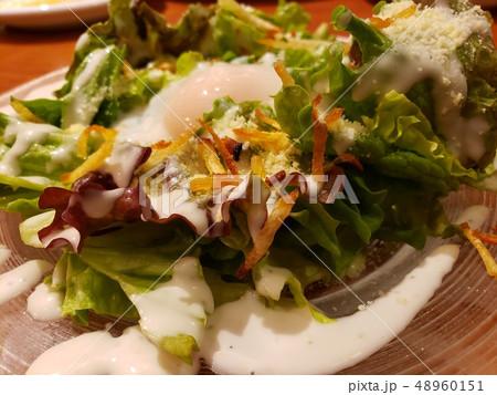 Caesar salad シーザーサラダ 48960151