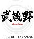 武蔵野 筆文字 ベクターのイラスト 48972050