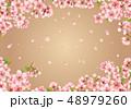 桜 花 春のイラスト 48979260