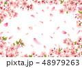 桜 花 春のイラスト 48979263