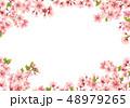 桜 花 春のイラスト 48979265