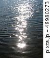 水面のきらめき 48980273