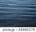 水面のさざ波 48980276