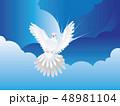 鳩 ハト ホワイトのイラスト 48981104