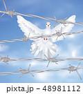 とげ 鳥 配線のイラスト 48981112