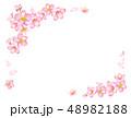桜 春 花のイラスト 48982188