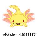 ウーパールーパー 全身 Axolotl ゴールデン アルビノ 48983353