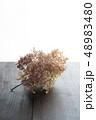 紫陽花 花 あじさいの写真 48983480