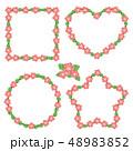 ハイビスカス 花 フレームのイラスト 48983852