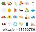 かわいい夏のアイコンセット 48990759