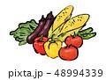 夏野菜 野菜 イラスト 48994339
