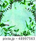 フレーム 葉 水彩画のイラスト 48997563