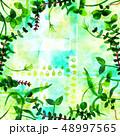 フレーム 葉 水彩画のイラスト 48997565