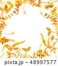 フレーム 水彩画 ドローイングのイラスト 48997577