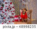 クリスマス わんこ 犬の写真 48998235