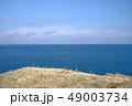 太平洋 49003734