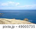 太平洋 49003735