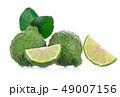 ベルガモット シトラス 柑橘の写真 49007156