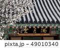 梅 タイル 伝統 49010340