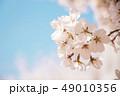 桜 春 外出 49010356