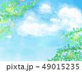 葉 新緑 春のイラスト 49015235