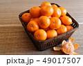 みかん 蜜柑 果物の写真 49017507