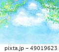 葉 新緑 春のイラスト 49019623