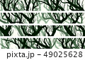 Banners of trees with branches of deadwood forest. 49025628