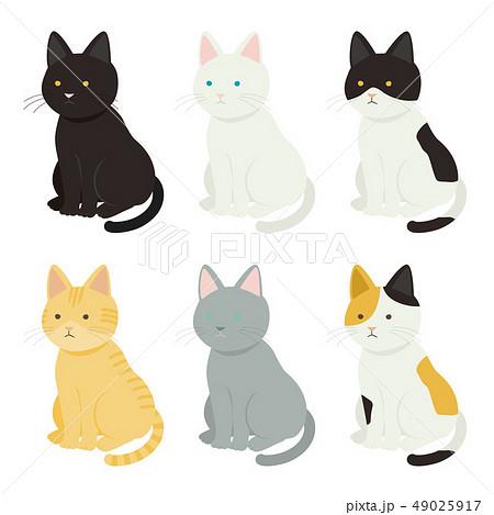 色々な猫 49025917