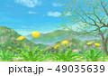 春の里山に咲くたんぽぽと葉桜 水彩調 49035639