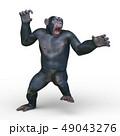 猿 49043276