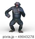 猿 49043278