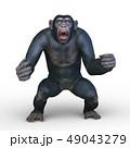 猿 49043279
