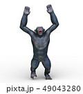 猿 49043280