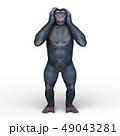 猿 49043281