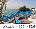 海 植物 ビーチの写真 49044526