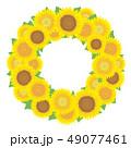 ひまわり 向日葵 ベクターのイラスト 49077461