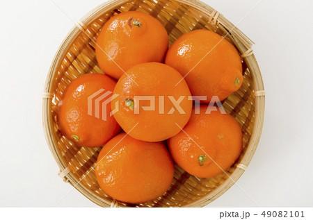 ミネオラオレンジ 49082101